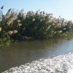 Auf der Fahrt zum Camp am schoenen Zambezi