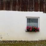 Dorf-Stilleben